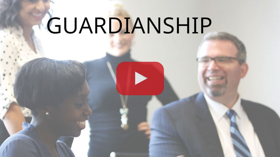 GUARDIANSHIP LITIGATION